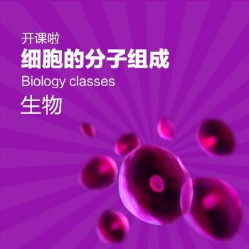 开课啦-细胞的分子组成