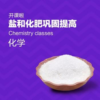 开课啦-盐和化肥巩固提高
