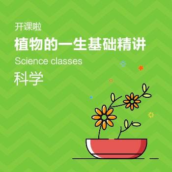 开课啦-植物的一生基础精讲