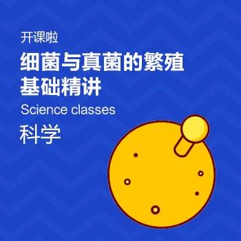开课啦-细菌与真菌的繁殖基础精讲